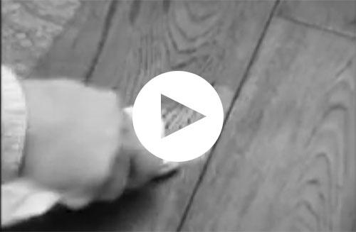 video-casabella-hardwood-oil-finish